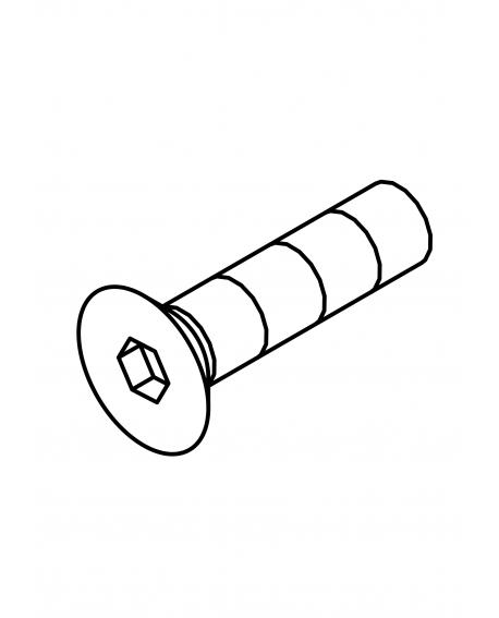 FHS0310N FHS, M3x10 (N)